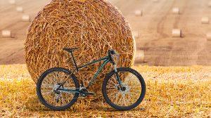 Che ciclista sei?